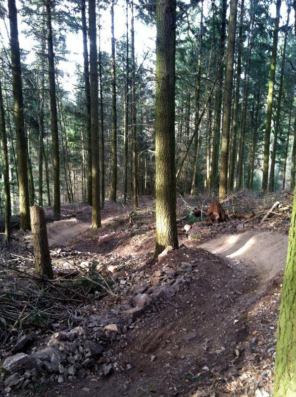Freiburg single trail