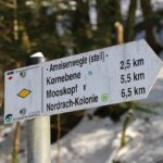 Wanderung von Gengenbach (Parkplatz Haigerach) über den Ameisenweg zum Naturfreundehaus Kornebene