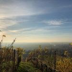 Herbstwanderung zum Hohen Horn – Der Wetterumschwung steht bevor