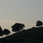 Westweg – Etappe 7 – Von Wieden zum Belchen und zurück in die Zivilisation – Abschluss über das Münstertal