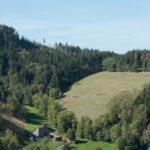Querweg Freiburg - Bodensee / Etappe #2 von Himmelreich nach Hinterzarten mit Abstecher in die Ravenna Schlucht