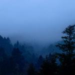 Sonnenaufgang im Nebel auf dem Hohen Horn