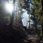 Bike & Hike im Haigerachtal - Rundwanderung Mooskopf / Gengenbach