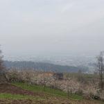 Sasbachwalden Rundwanderung zum Birgittenschloss