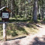 Ellbachsee Rundwanderung - Kniebis / Freudenstadt (Feuerwehrwegle, Räuberwegle, Heimatpfad, und Abenteuerpfad)