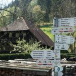 1. Mai Wanderung - Kirnbacher Bollenhut Talwegle - Wo der Bollenhut zuhause ist