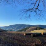 Oberharmersbacher Vesperweg - zum Harkhof