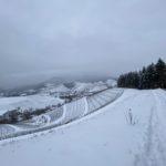 Schneeschuhtour vor der Haustür - Von Oberkirch zum Geigerskopf - Hummelswälder Hof - Kapellenberg - Schloss Staufenberg - Durbach